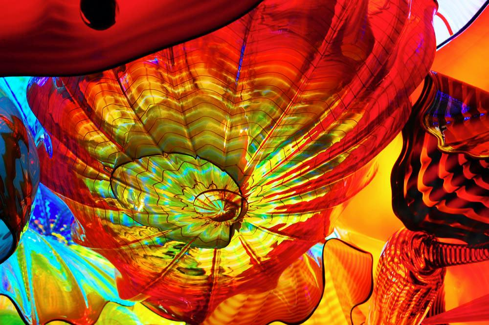 Dale-Chihuly-Artist032